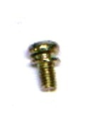 Carburetor Butterfly Screw and Washer (Only) (Ruixing)